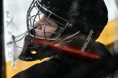 CIAC Ice Hockey; Newtown 4 vs. SH,LI,TH,NO 1 - Photo # (1281)