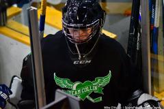 CIAC Ice Hockey; Newtown 4 vs. SH,LI,TH,NO 1 - Photo # (1304)