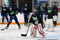 CIAC Ice Hockey; Newtown 4 vs. SH,LI,TH,NO 1 - Photo # (138)