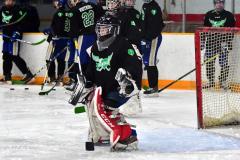 CIAC Ice Hockey; Newtown 4 vs. SH,LI,TH,NO 1 - Photo # (140)