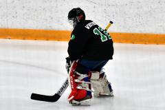 CIAC Ice Hockey; Newtown 4 vs. SH,LI,TH,NO 1 - Photo # (4)