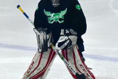 CIAC Ice Hockey; Newtown 4 vs. SH,LI,TH,NO 1 - Photo # (898)
