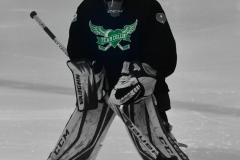 CIAC Ice Hockey; Newtown 4 vs. SH,LI,TH,NO 1 - Photo # (900)