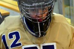 CIACT D3 Ice Hockey; #8 Newtown 7 vs. #9 Wilton 2 - Photo # 1251