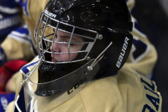 CIACT D3 Ice Hockey; #8 Newtown 7 vs. #9 Wilton 2 - Photo # 1630