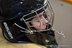 CIACT D3 Ice Hockey; #8 Newtown 7 vs. #9 Wilton 2 - Photo # 2107