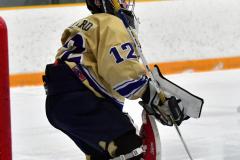 CIACT D3 Ice Hockey; #8 Newtown 7 vs. #9 Wilton 2 - Photo # 220