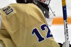 CIACT D3 Ice Hockey; #8 Newtown 7 vs. #9 Wilton 2 - Photo # 222