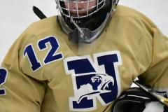 CIACT D3 Ice Hockey; #8 Newtown 7 vs. #9 Wilton 2 - Photo # 2229