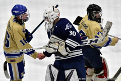 CIACT D3 Ice Hockey; #8 Newtown 7 vs. #9 Wilton 2 - Photo # 2242
