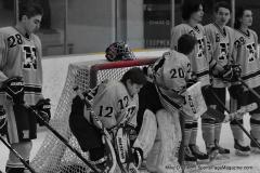CIACT D3 Ice Hockey; #8 Newtown 7 vs. #9 Wilton 2 - Photo # 419