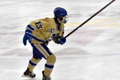 CIAC Ice Hockey; Focused on Newtown 7 vs. Mt. Everett 1 - Photo 331