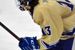 CIAC Ice Hockey; Focused on Newtown 7 vs. Mt. Everett 1 - Photo 374