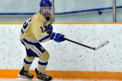 CIAC Ice Hockey; Focused on Newtown 7 vs. Mt. Everett 1 - Photo 685