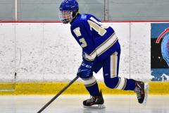 CIAC Ice Hockey; L.H.- H-K, Cogin. 8 vs Newtown 1 - Photo # (25)