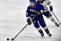 CIAC Ice Hockey; L.H.- H-K, Cogin. 8 vs Newtown 1 - Photo # (424)