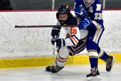 CIAC Ice Hockey; L.H.- H-K, Cogin. 8 vs Newtown 1 - Photo # (884)