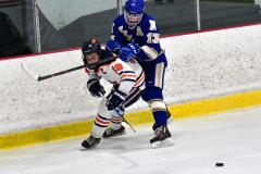 CIAC Ice Hockey; L.H.- H-K, Cogin. 8 vs Newtown 1 - Photo # (885)