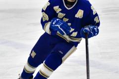 CIAC Ice Hockey; L.H.- H-K, Cogin. 8 vs Newtown 1 - Photo # (950)