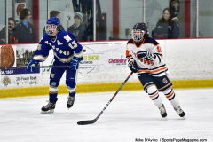 CIAC Ice Hockey; L.H.- H-K, Cogin. 8 vs Newtown 1 - Photo # (982)