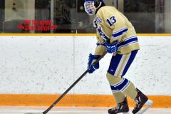 CIAC Ice Hockey; Newtown 2 vs. Daniel Hand 6 - Photo # 059