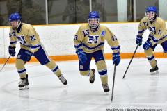 CIAC Ice Hockey; Newtown 2 vs. Daniel Hand 6 - Photo # 087