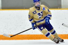 CIAC Ice Hockey; Newtown 2 vs. Daniel Hand 6 - Photo # 522