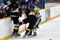 CIAC Ice Hockey; Newtown 2 vs. Daniel Hand 6 - Photo # 726