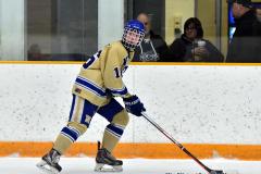 CIAC Ice Hockey; Focused on Newtown 7 vs. Mt. Everett 1 - Photo 175