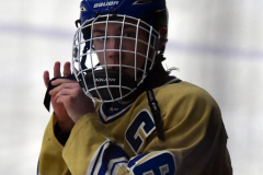 CIAC Ice Hockey; Focused on Newtown 7 vs. Mt. Everett 1 - Photo 314