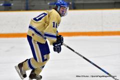 CIAC Ice Hockey; Focused on Newtown 7 vs. Mt. Everett 1 - Photo 430