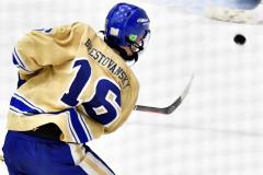 CIAC Ice Hockey; Focused on Newtown 7 vs. Mt. Everett 1 - Photo 652