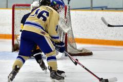 CIAC Ice Hockey; Focused on Newtown 7 vs. Mt. Everett 1 - Photo 706