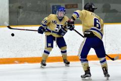CIAC Ice Hockey; Focused on Newtown 7 vs. Mt. Everett 1 - Photo 724