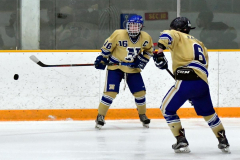 CIAC Ice Hockey; Focused on Newtown 7 vs. Mt. Everett 1 - Photo 725