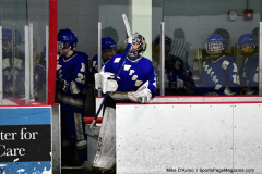 CIAC Ice Hockey; L.H.- H-K, Cogin. 8 vs Newtown 1 - Photo # (11)