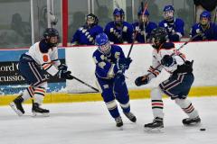 CIAC Ice Hockey; L.H.- H-K, Cogin. 8 vs Newtown 1 - Photo # (319)