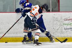 CIAC Ice Hockey; L.H.- H-K, Cogin. 8 vs Newtown 1 - Photo # (444)