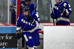 CIAC Ice Hockey; L.H.- H-K, Cogin. 8 vs Newtown 1 - Photo # (46)
