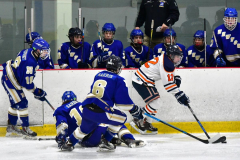 CIAC Ice Hockey; L.H.- H-K, Cogin. 8 vs Newtown 1 - Photo # (700)
