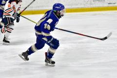 CIAC Ice Hockey; L.H.- H-K, Cogin. 8 vs Newtown 1 - Photo # (728)