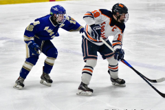 CIAC Ice Hockey; L.H.- H-K, Cogin. 8 vs Newtown 1 - Photo # (733)