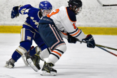 CIAC Ice Hockey; L.H.- H-K, Cogin. 8 vs Newtown 1 - Photo # (970)
