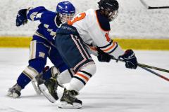 CIAC Ice Hockey; L.H.- H-K, Cogin. 8 vs Newtown 1 - Photo # (970)