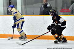 CIAC Ice Hockey; Newtown 2 vs. Daniel Hand 6 - Photo # 587