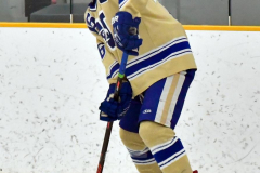 CIAC Ice Hockey; Newtown 2 vs. Daniel Hand 6 - Photo # 588