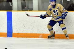 CIAC Ice Hockey; Newtown 2 vs. Daniel Hand 6 - Photo # 590