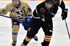 CIAC Ice Hockey; Newtown 2 vs. Daniel Hand 6 - Photo # 608