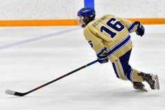 CIAC Ice Hockey; Newtown 2 vs. Daniel Hand 6 - Photo # 610
