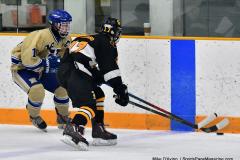 CIAC Ice Hockey; Newtown 2 vs. Daniel Hand 6 - Photo # 652